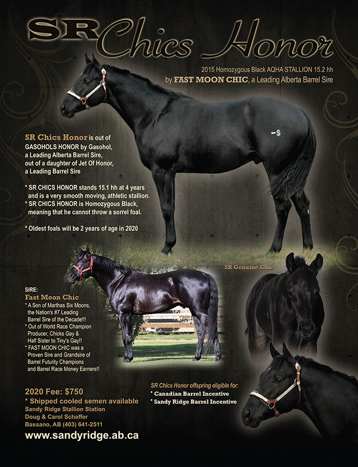 SR Chics Honor by Fast Moon Chic - a leading Alberta barrel racing sire